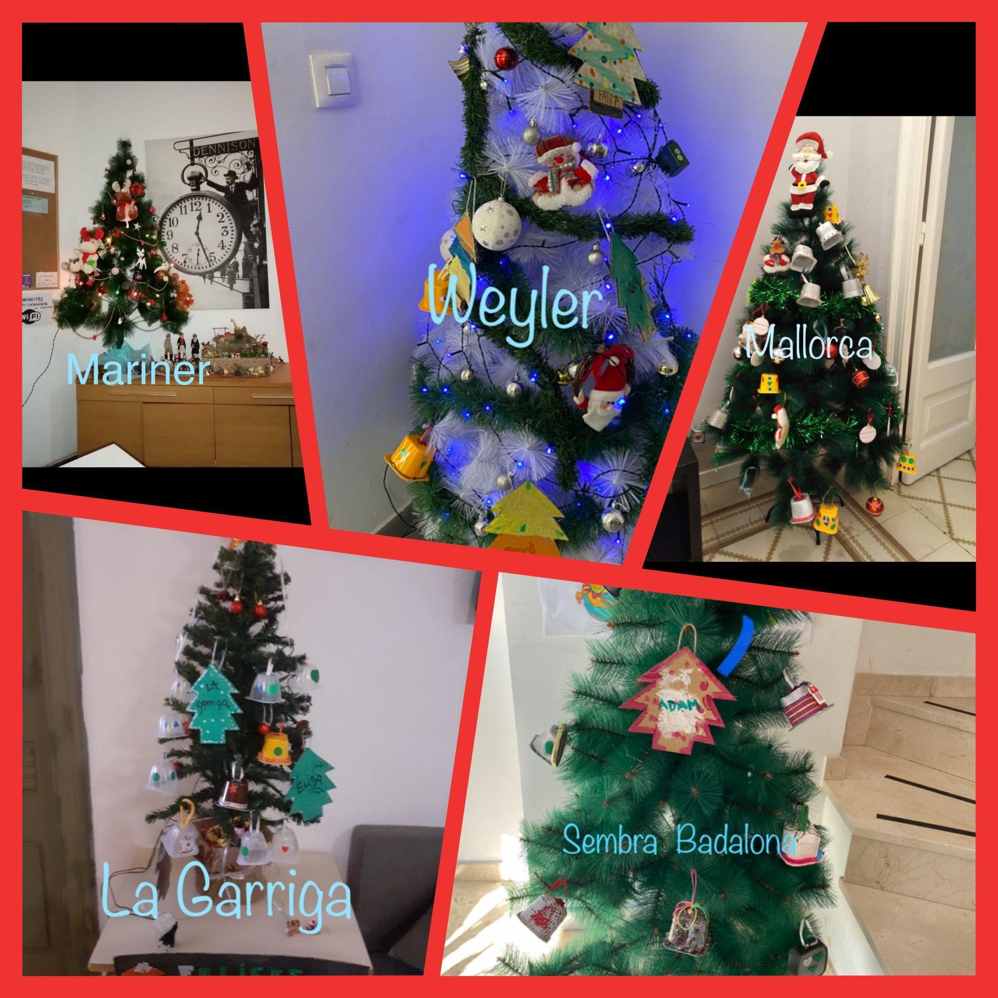 Socio Habitatge Nadal